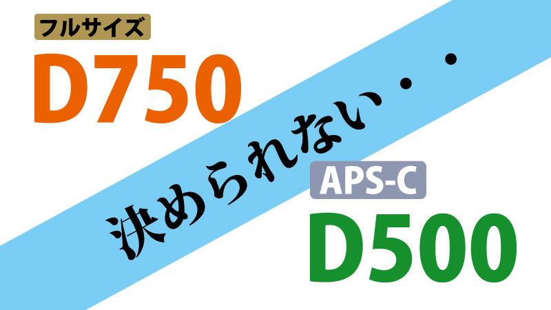 D750とD500が合体してくれたら悩まなくてすむ